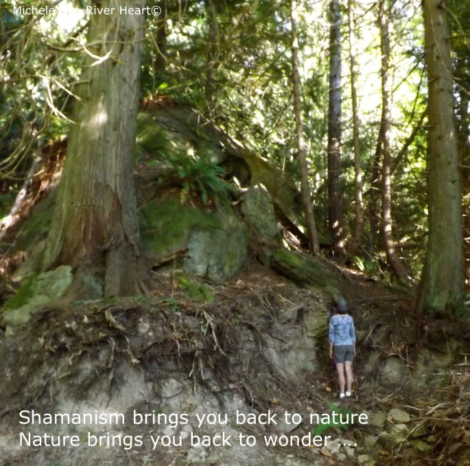shamanism, shamanic coaching, wonder, healing, back to nature, michele fire-river heart, healing through ceremony
