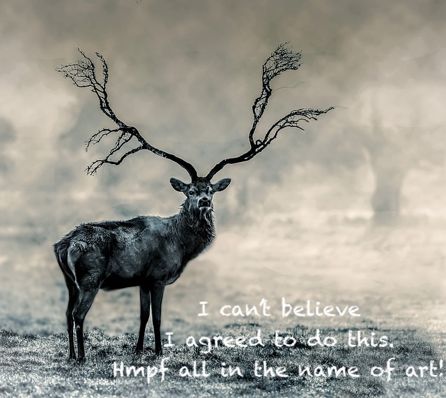 elk, art, humane, humanity, shamanism, mayan, daykeeper, muluk, interconnection, interdependence, healing through ceremony.com, michele fire-river heart