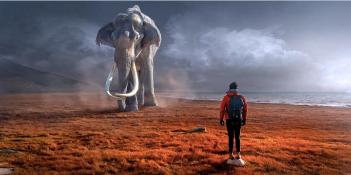 patience, wisdom, shamanism, mayan, daykeeper, Imix, beginnings, start, cycles, dreamer, new, oneness, original, root, source, HEALINGthroughCEREMONY.com, Michele Fire-River Heart