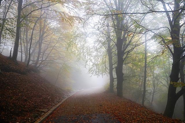 wisdom, doubt, mayan, daykeeper, kawak, transformation, sudden, HEALINGthroughCEREMONY.com. Michele Fire-River Heart
